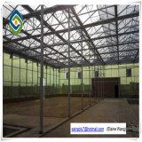 O vidro Tempered da estufa do túnel do fabricante apainela a casa verde