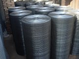 Galvanizado ou PVC Coated Iron Welded Wire Mesh