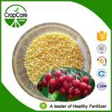 Engrais hydrosoluble NPK de compost granulaire
