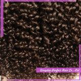強調された人間のねじれた巻き毛の100%のインド人の毛