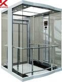 ステンレス鋼が付いている歓迎された観光のエレベーター