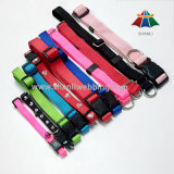 Polyester di nylon Pet Supply, Pet Harness e Lead, Dog Leash e Dog Collar