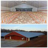 Poductionキットが付いている自動肉焼き器の農場の構築