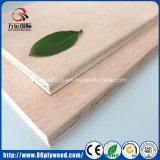 madeira compensada bem lixada do Poplar de 18mm Okoume para a mobília extravagante