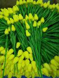 튤립 Gu0118135313의 베스트셀러 인공 꽃