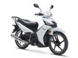 Motorrad unter Knochen YAMAHA U8, Vega, Ersatzteile der Funken-Kraft-X