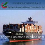 Logística da transmissão do frete de mar do corretor do frete de China a Iquique, o Chile
