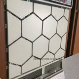 La fachada de aluminio artesona la fachada de aluminio de la pared del panal