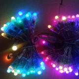방수 12V LED 옥외 빛 유연한 네온 LED 밧줄 빛