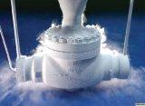 Klep de Bij lage temperatuur van het roestvrij staal (DN15-DN150)