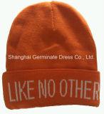 Chapeau de tricotage de chapeau de Beanie de mode avec la manchette (HJB-098)