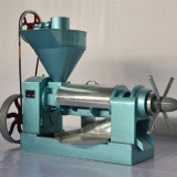 De hete Machine 6yl-95 van de Pers van de Olie van de Verkoop Eetbare Mini
