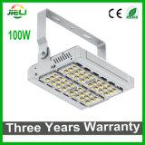 Indicatore luminoso esterno impermeabile di progetto LED di buona qualità 100W SMD3030