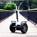 Rouleau 2 et Self Balancing Scooter Electric Mobility Scooter