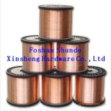 Fosforo Copper Wire da vendere
