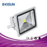 50W imprägniern 220V 110V ultradünnes RGB LED Flut-Licht mit Fernsteuerungs 24key