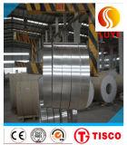Rifornimento direttamente 310S del fornitore della bobina di piatto dell'acciaio inossidabile