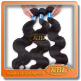 100%Unprocessed brasilianisches Hair (KBL-BH)