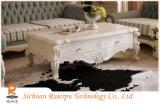 流行の家具が付いているヨーロッパ式の居間