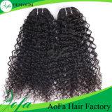 Do Virgin Curly Kinky de Remy da forma extensão brasileira do cabelo humano do cabelo