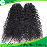 Top Kinky Curly Remy Extensão do cabelo humano Virgin Brazilian Hair