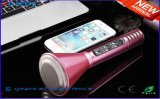 2016 Novo Bluetooth Speaker Microphone Portable Karaoke Player