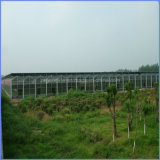 Angenehmes Leben Durable Polycarbonate Sheet für Greenhouse Project in Japan