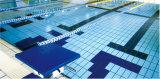 De standaard Tegel van het Zwembad voor Badkamers/Openlucht Gebruikte Rd1222