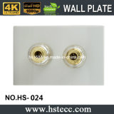Heißes Selling 55*36mm HiFi Speaker Module Wall Plate Socket Supplier