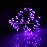 Luz solar de la cadena de 8 colores LED para toda la decoración de los días de fiesta