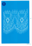 Laço da pestana para a roupa/vestuário/sapatas/saco/caso J026 (largura: 4.5cm-23cm)
