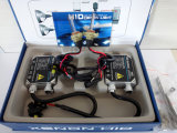 WS 12V 35W 5202 HID Conversion Kit mit Regular Ballast