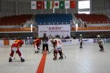 Rasterfeld-Typ Hockey-Fliesen, modularer Hockey-Gerichts-Fußboden, Plasic Bodenbelag