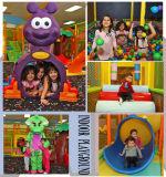 Campo da gioco per bambini grandi del Rainbow di tema della foresta