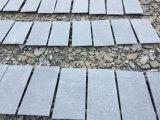 Compeitive Bluestones, pavimentazione del Bluestone e mattonelle della parete del Bluestone