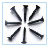 Bugola Head Philip Drywall Screw per Gypsum Board