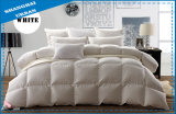 100%Cotton Raw Feather Bedding Comforter