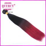 Colordの毛ボディ波Ombreは100%年のRemyの人間の毛髪の拡張を束ねる