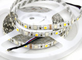 5m 5050 Koele Warme Witte 300 leiden SMD RGBW RGB& de Flexibele Lichten van Kerstmis van de Strook