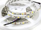 5m는 5050 SMD RGBW RGB& 온난한 백색 300 LED 유연한 지구 크리스마스 불빛을 냉각한다