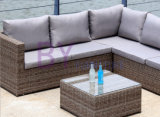 sofa extérieur de rotin de meubles de rotin de balcon d'hôtel des loisirs by-442