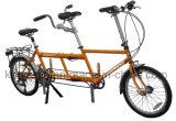 20人のインチ熱い販売法の専門家2のライダーのタンデムFolcingのバイクかタンデムバイク