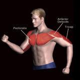 Matériel d'intérieur de forme physique de formation de force de matériel de gymnastique pour la presse de poitrine (M7-1001)