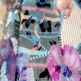 網のレースによって印刷される衣服のホーム織物の服ファブリック