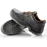 De Schoenen van de Bedrijfsveiligheid (l-7141)
