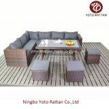 Sofá ao ar livre do Rattan da mobília com tabela (1204)