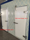 Oscillazione Door/Hinge Door per Freezer, cella frigorifera e Refrigerator