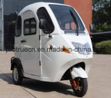 Трицикл новой полной кабины электрический с близким телом