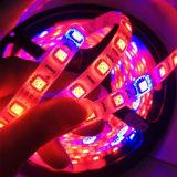 La tira impermeable de SMD5050 LED crece 12V/24V ligero