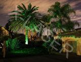 Lumière laser décorative imperméable à l'eau de jardin de lumière laser extérieure